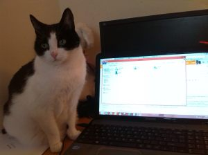 Trinity - the Admin Assistant's assistant.